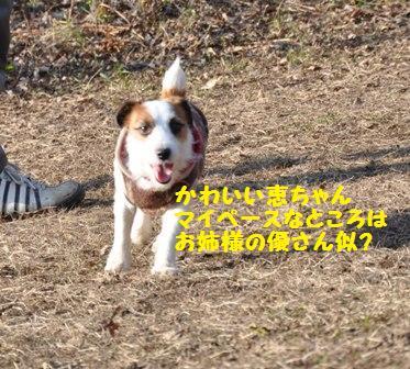 f0212597_10422883.jpg