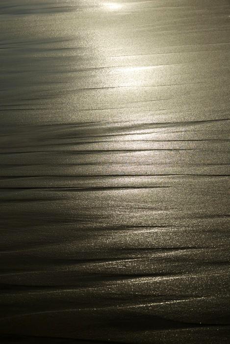 今日の海岸。_c0127403_17333882.jpg