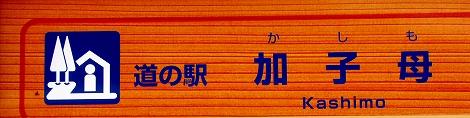 b0051109_155887.jpg