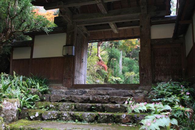 宗蓮寺の紅葉_e0048413_2247884.jpg