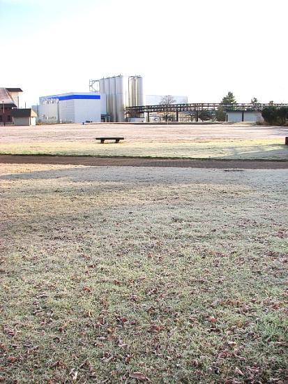 2010年11月25日(木):今朝、道内最寒だった中標津空港_e0062415_1834584.jpg