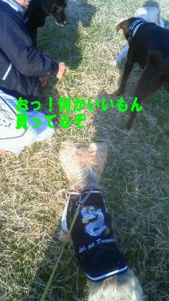d0013645_14391061.jpg