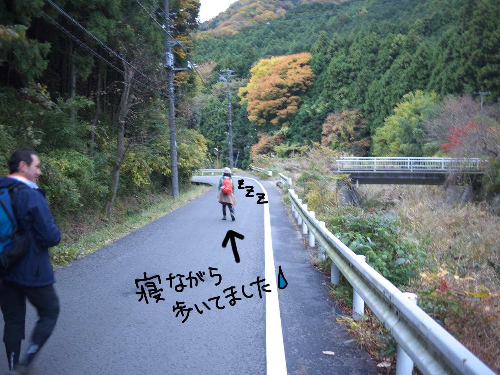 初の大山登山☆_e0165361_23184125.jpg