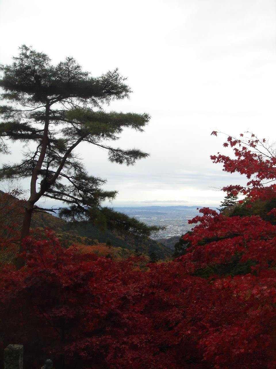 初の大山登山☆_e0165361_2345956.jpg