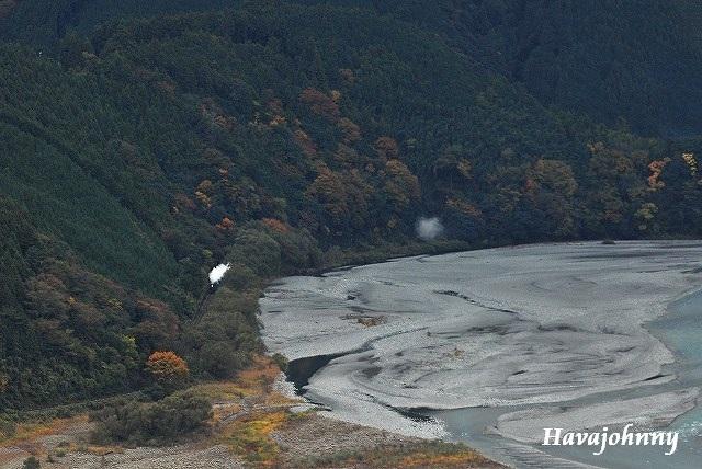 大井川の豆粒_c0173762_21483876.jpg