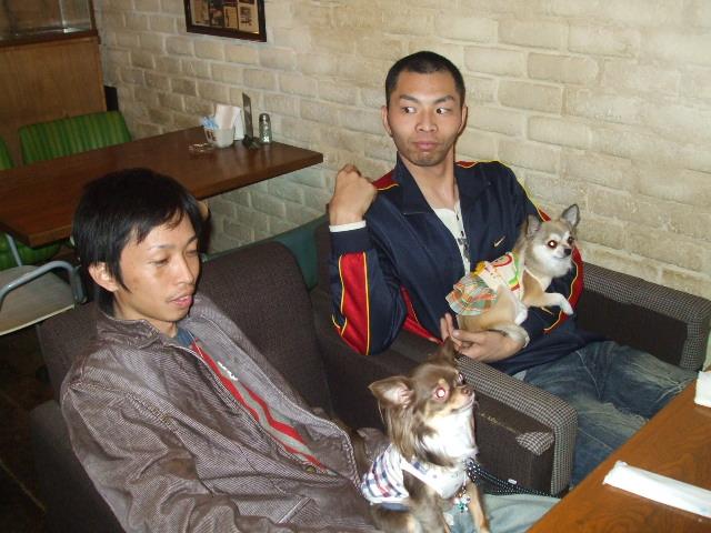 なんとなく、犬OKみたいで?DOGカフェじゃないお洒落なカフェ・・に行って見よう_c0060469_053911.jpg