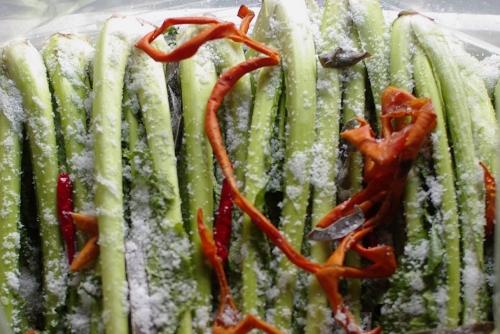 野沢菜漬け2010 第三弾 醤油味+柿の皮_c0110869_17215717.jpg