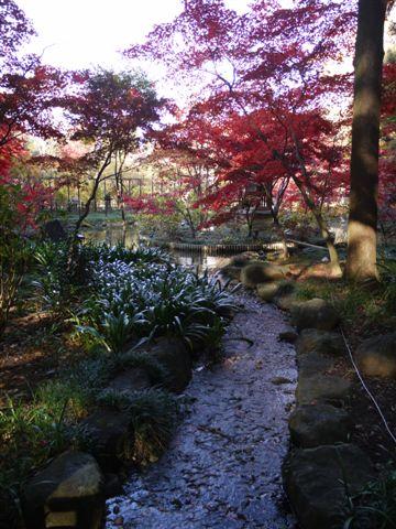 2010紅葉第一弾!!長谷山本土寺です、綺麗でした(*^^)v_b0175688_19162217.jpg