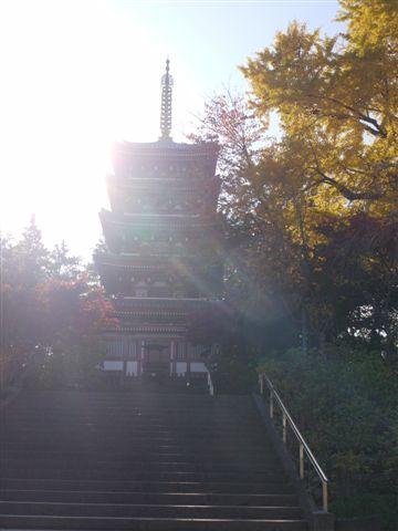 2010紅葉第一弾!!長谷山本土寺です、綺麗でした(*^^)v_b0175688_19252674.jpg