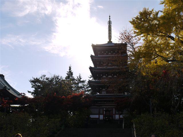 2010紅葉第一弾!!長谷山本土寺です、綺麗でした(*^^)v_b0175688_19262440.jpg