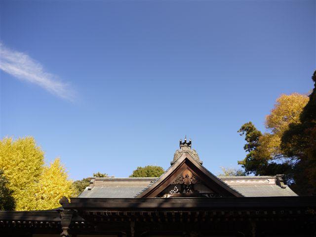2010紅葉第一弾!!長谷山本土寺です、綺麗でした(*^^)v_b0175688_192961.jpg