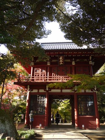 2010紅葉第一弾!!長谷山本土寺です、綺麗でした(*^^)v_b0175688_1974096.jpg