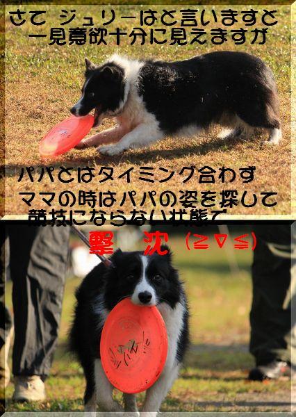 b0101991_21503119.jpg