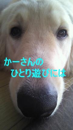 b0206300_18545346.jpg