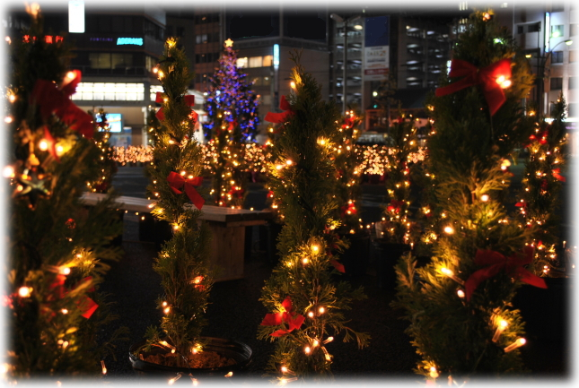福井駅西口のイルミネーションと福井城址のライトアップ_f0229508_2274867.jpg