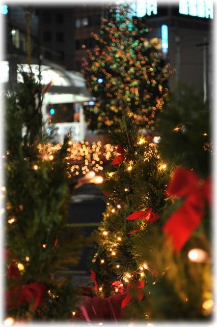 福井駅西口のイルミネーションと福井城址のライトアップ_f0229508_2282935.jpg