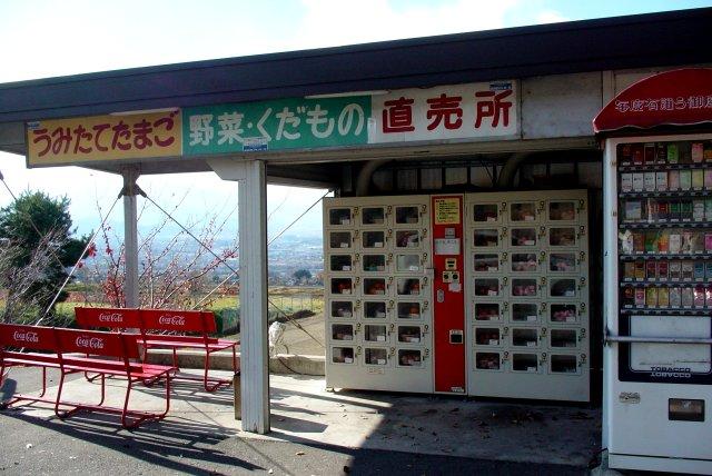 うみたてたまご野菜・くだもの直売所自動販売機_a0003909_0333655.jpg