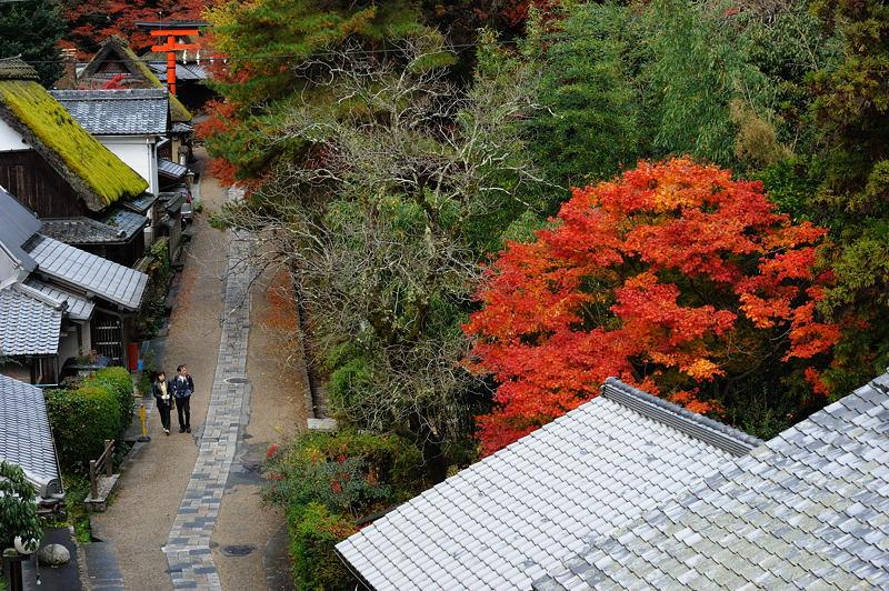 2010京都の紅葉 鳥居本_f0032011_20494568.jpg