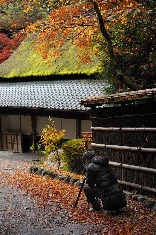 2010京都の紅葉 鳥居本_f0032011_20503161.jpg