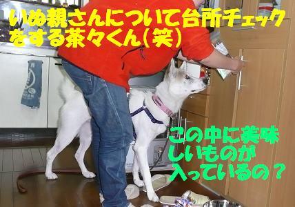 f0121712_16375237.jpg