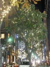 クリスマスのイルミネーション_d0171222_1153742.jpg