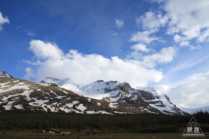 071 Icefields Parkway ~黄金色に輝く帰り道~_c0211532_19122026.jpg