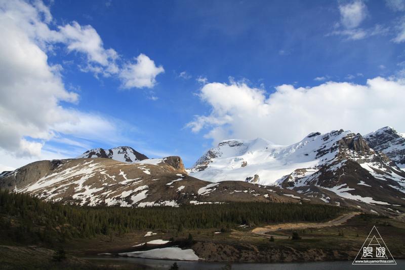 071 Icefields Parkway ~黄金色に輝く帰り道~_c0211532_1912464.jpg