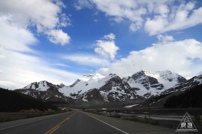 071 Icefields Parkway ~黄金色に輝く帰り道~_c0211532_1921437.jpg