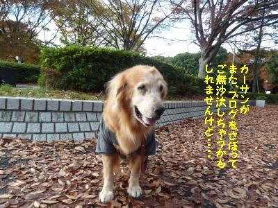 f0118135_2215380.jpg