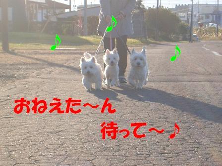 c0212637_832778.jpg