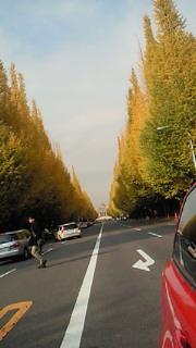 すっかり秋も過ぎようと_b0105458_111063.jpg