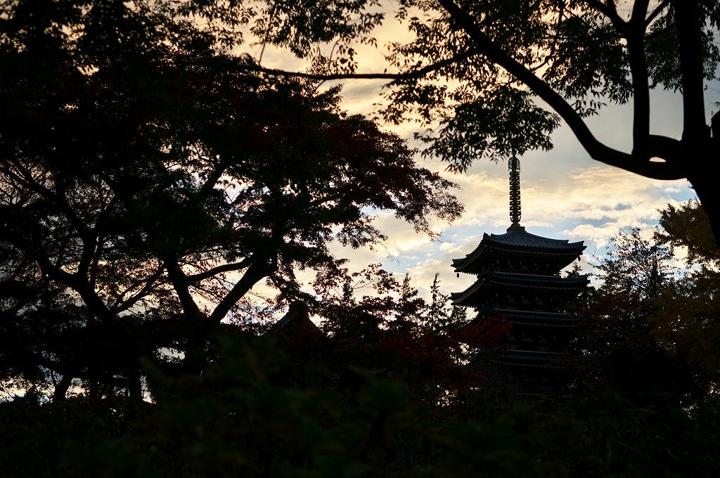 本土寺 2010秋 1_f0018464_2161360.jpg