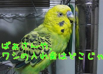 f0196665_0215543.jpg