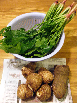 新鮮無農薬野菜_b0155675_18341160.jpg