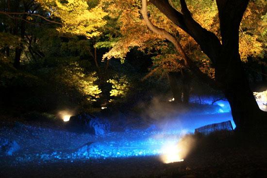 紅葉と大名庭園のライトアップ_f0030085_21143868.jpg