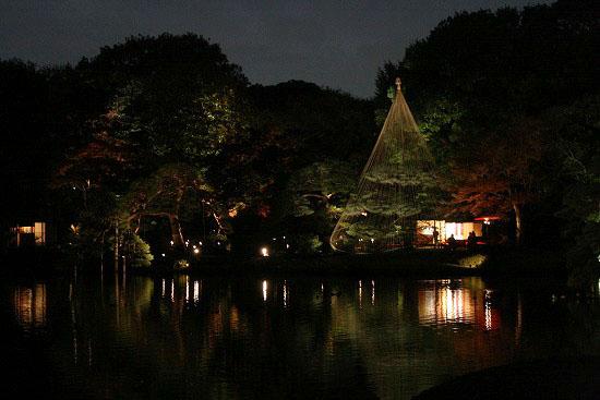 紅葉と大名庭園のライトアップ_f0030085_21204227.jpg