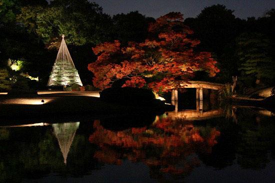 紅葉と大名庭園のライトアップ_f0030085_21285954.jpg