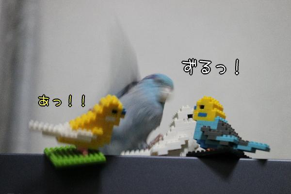 b0062090_12112688.jpg