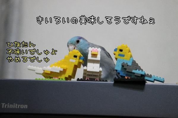 b0062090_1281067.jpg