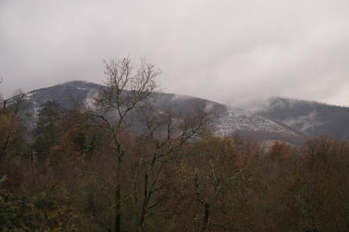 初雪です・・・_f0106597_200203.jpg