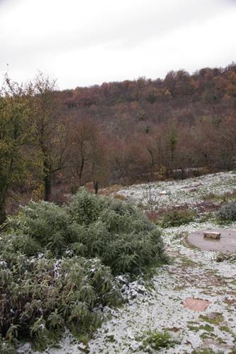 初雪です・・・_f0106597_2023526.jpg