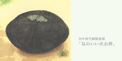 田中清代銅版画展「気のいい火山弾」_d0165298_23321677.jpg