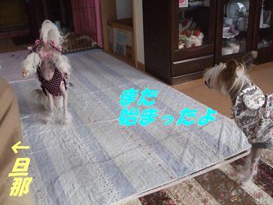 f0179203_7224595.jpg