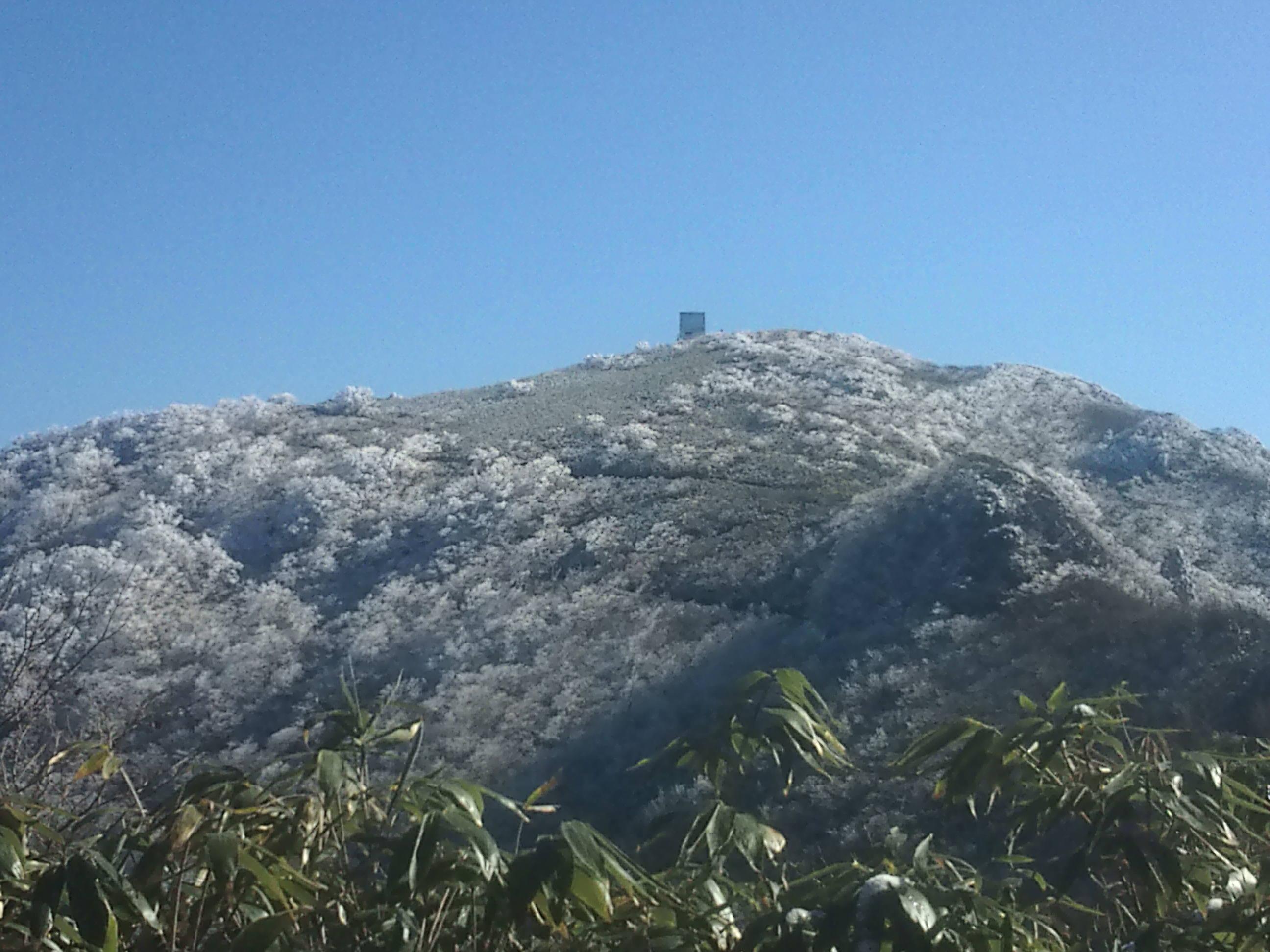 やっぱり氷ノ山っていぃね!! (11月27日)_f0101226_22262378.jpg