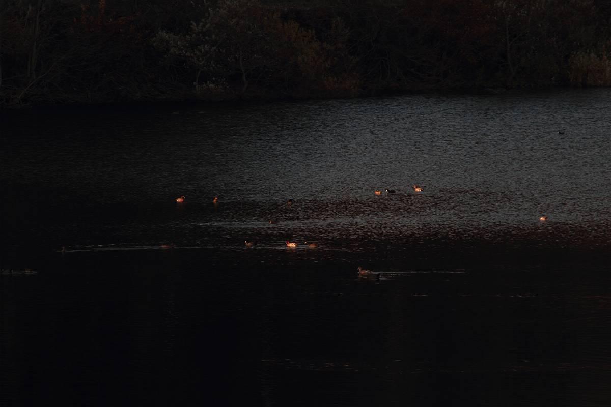 福島県 晩秋の湖の風景_d0106628_754482.jpg