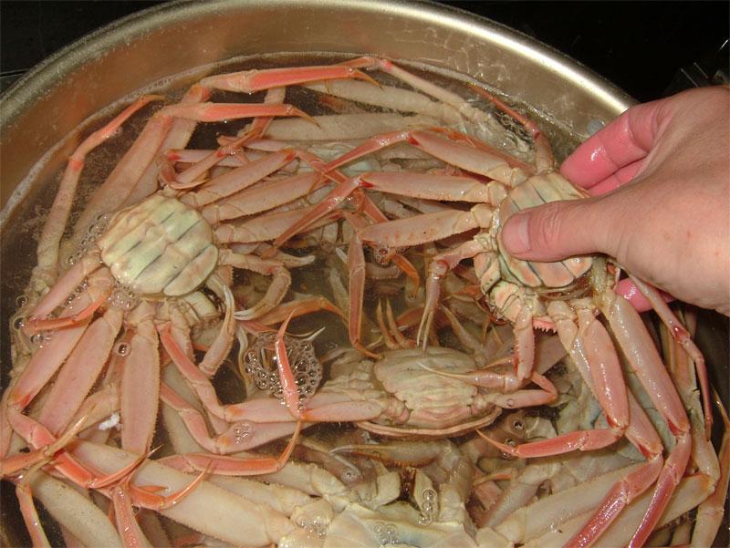 蟹雑炊には蟹!!これだけ入れます!! _c0110051_17113513.jpg