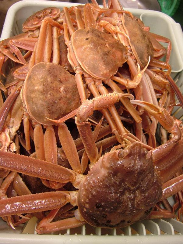 蟹雑炊には蟹!!これだけ入れます!! _c0110051_171159.jpg