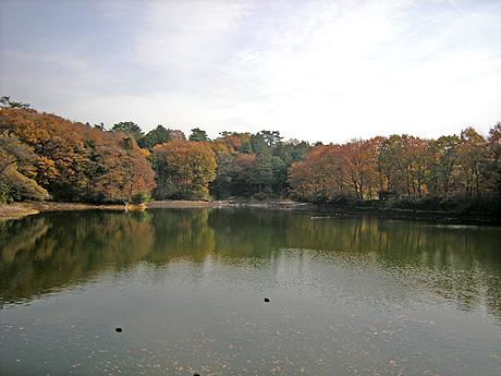 11月27日 嶺公園 晩秋スケッチ_a0001354_21275673.jpg