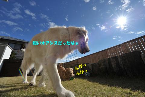 d0043478_14161216.jpg