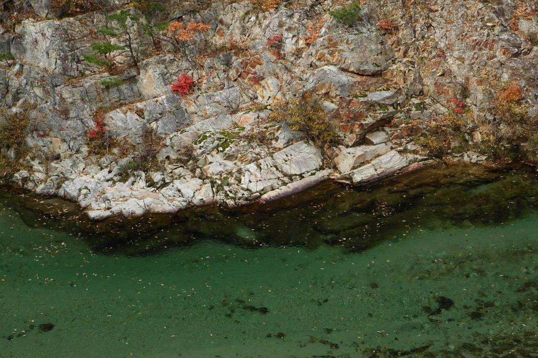 五十里湖付近から 日光市 2010年11月13日 撮影_e0143883_7422932.jpg